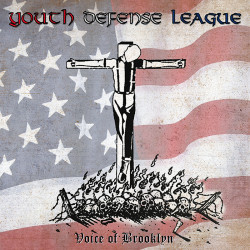 """Youth Defense League - Voice Of Brooklyn 12"""" LP"""