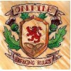 "On File - Breaking Rules 12"" LP (blue/white mix vinyl)"