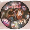 """On File - Ejected From the Premises 12"""" pic disc LP"""